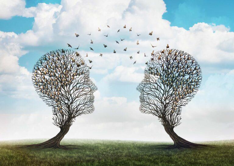 tree-minds-bird-communication